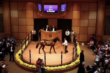 Dave Landry | The record-setting yearling: Maverick hammered down for $1.1 million.