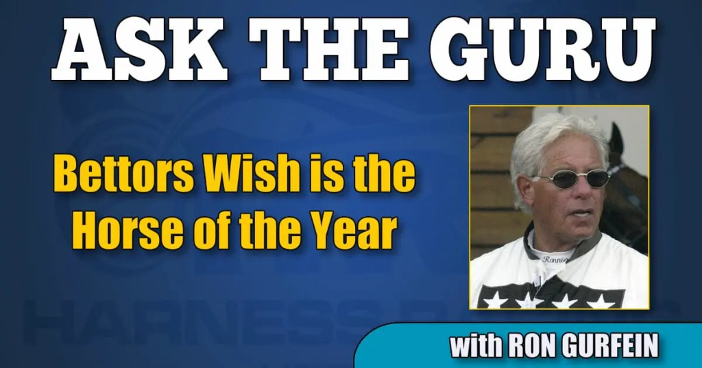 Bettors Wish is the Horse of the Year