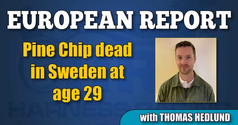 Pine Chip dead in Sweden at age 29
