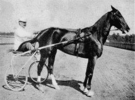 C.K.G. Billings with Lou Dillon in 1903
