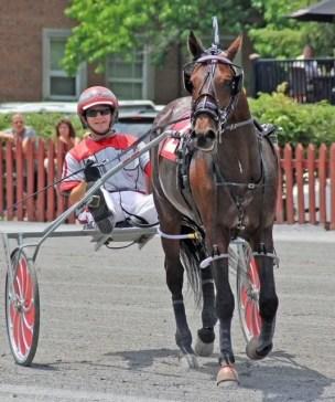 Geri Schwarz | Third-generation driver, trainer and owner Shane Darish has an unshakeable passion for the game.
