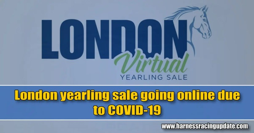 London yearling sale going online due to COVID-19