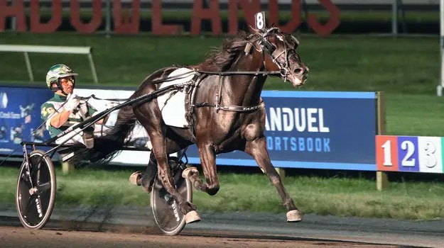 Lisa Photo | Ready For Moni (shown winning his Hambletonian elimination last week with Yannick Gingras) is the second choice in the morning line for Saturday's $1 million Hambletonian final at 3-1.