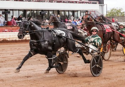 Mark Hall / USTA | Tall Dark Stranger (Yannick Gingras) also won his Tattersalls test in 1:47.2.