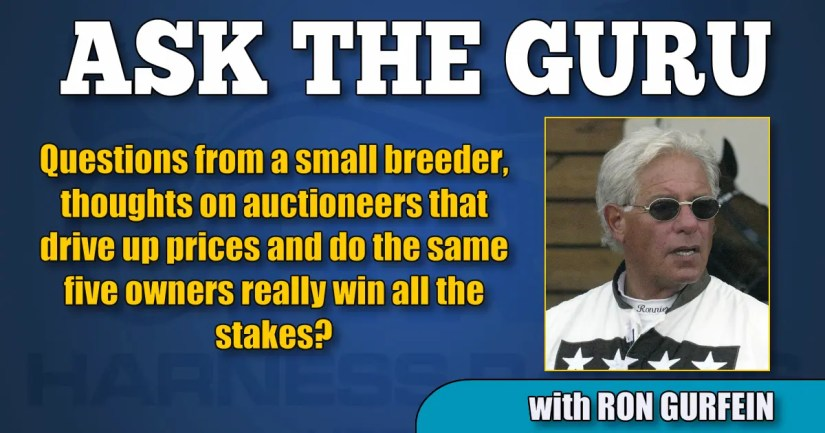 Questions from a small breeder, thoughts on auctioneers that drive up prices and do the same five owners really win all the stakes?