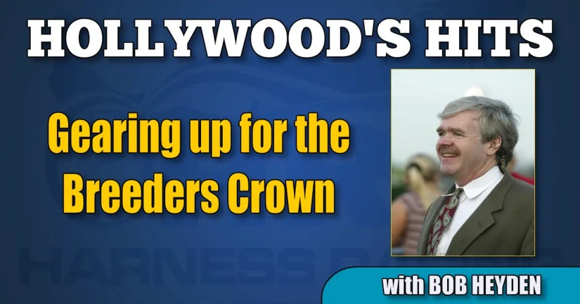Gearing up for the Breeders Crown