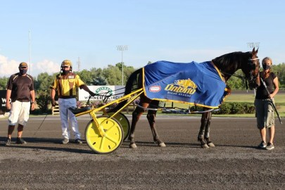 New Image Media | (From left): John Cecchin, Trevor Henry and Kathy Cecchin with Desperate Man after his first Gold Series/lifetime win at Woodbine Mohawk Park on July 3.