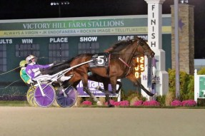 Dean Gillette | Lady Chaos (David Miller) won the $600,000 Breeders Crown for rookie trotting fillies in 1:54.4.