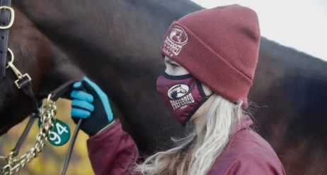 Dave Landry | Preferred Equine Canada led all consignors with $1,106,000 in gross sales.