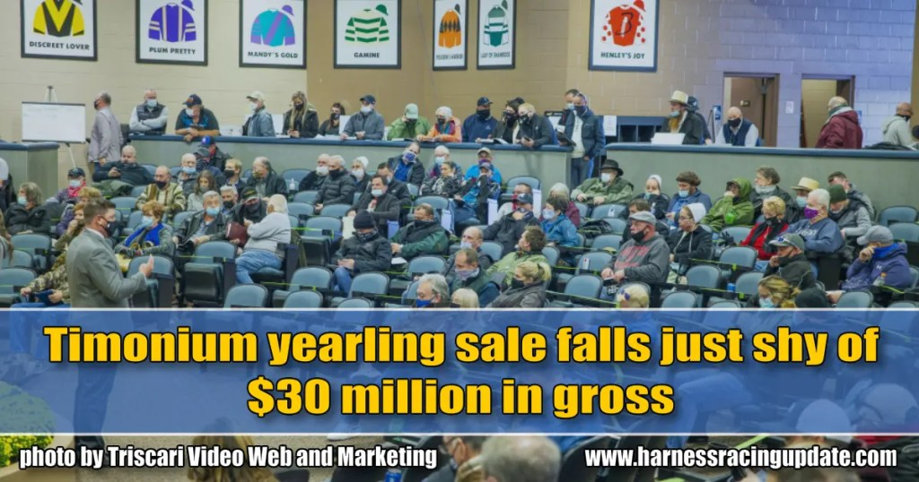 Timonium yearling sale falls just shy of $30 million in gross