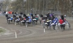ALN   Månprinsen A.M. often had to pass a field of 13-14 horses when he raced in the Swedish V75. Here he is seen in the back of the field with less than 1,000 meters to go at Romme racetrack.