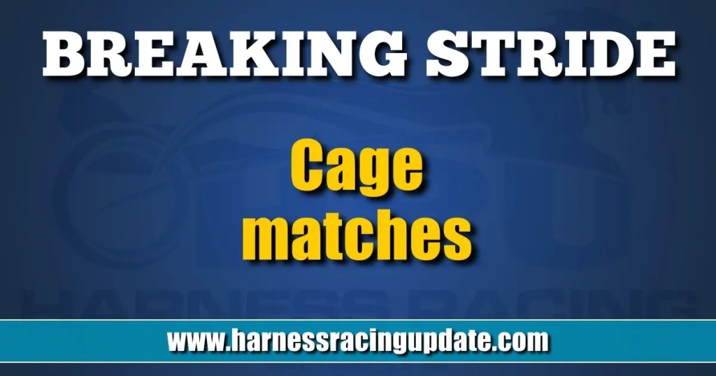Cage matches
