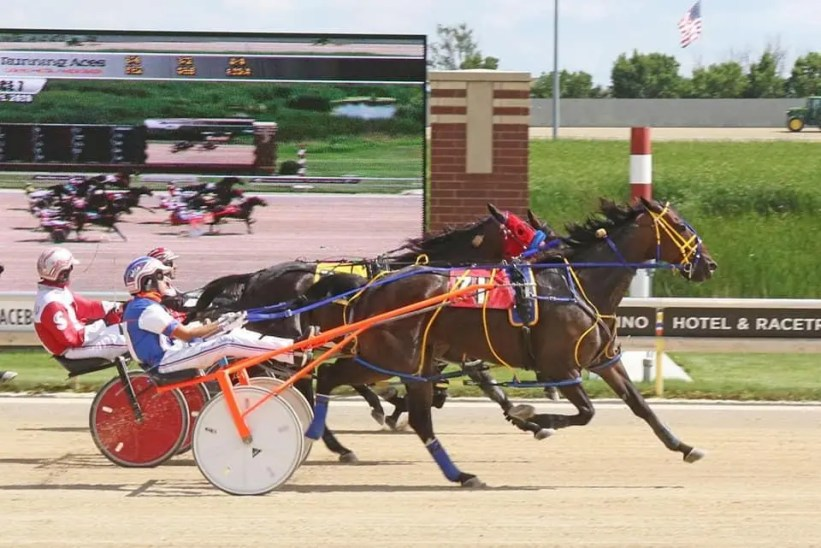Nineteen-year-old Jacob Cutting winning a race at Running Aces in Minnesota. Cutting is now a leading driver at Cal-Expo.