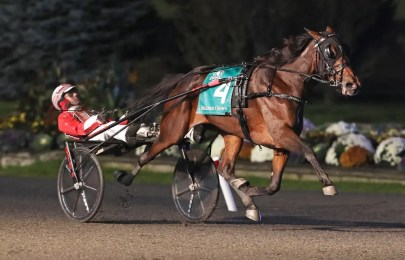 Claus Andersen | Manchego (Dexter Dunn) was voted the Older Trotting Mare of the Year in one of the closest Dan Patch contests of 2020.
