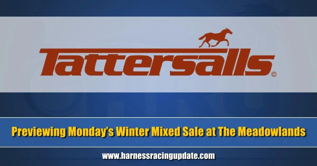 Previewing Monday's Winter Mixed Sale at The Meadowlands
