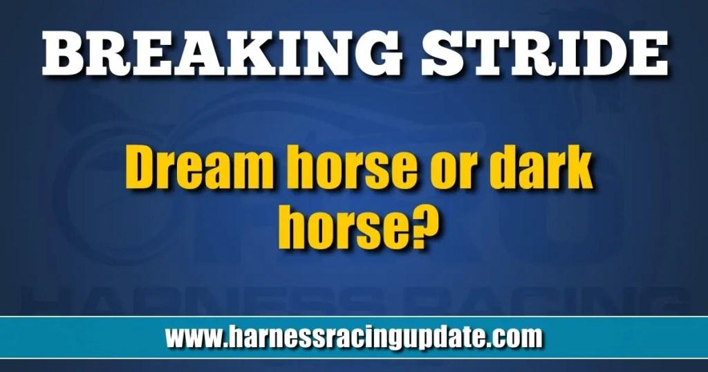 Dream horse or dark horse?