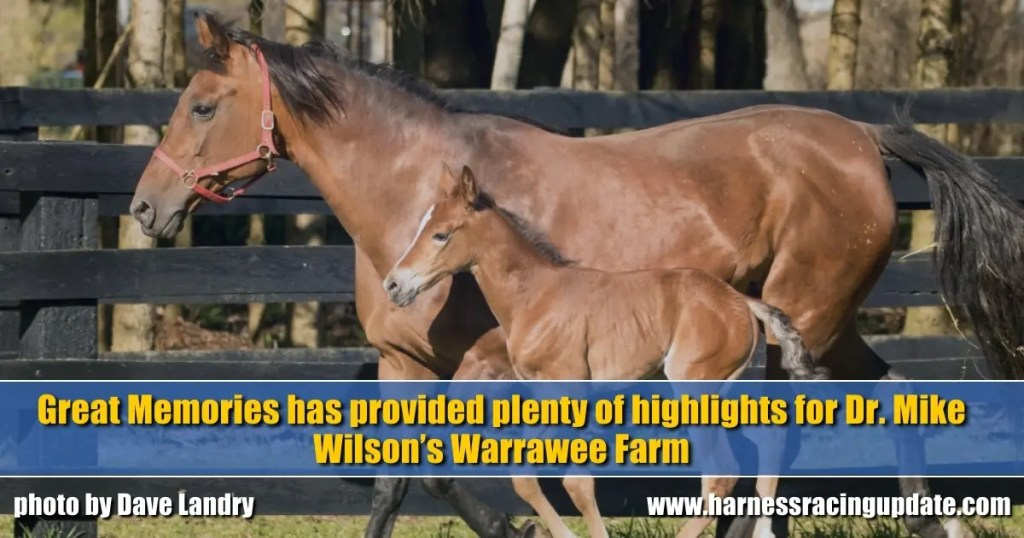 Great Memories has provided plenty of highlights for Dr. Mike Wilson's Warrawee Farm