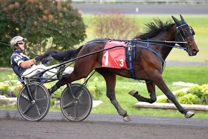 New Image Media Luca Hanover (Bob McClure) recorded the fastest win of four $22,850 2-year-old trotting colt Ontario Sires Stakes (OSS) Grassroots divisions when he won in 1:57.3 at Woodbine Mohawk Park on July 15. The Resolve colt is trained by Francis Dumouchel for his co-owners Own A Standardbred 2021 of Komoka, ON, Ecurie CSL of Sorel-Tracy and 9174 7998 Quebec Inc. of St-Janvier-Mirabel, QC.