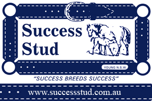 Success Stud Young NSW Australia