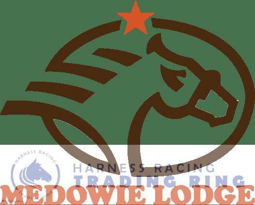 medowie-lodge-logo