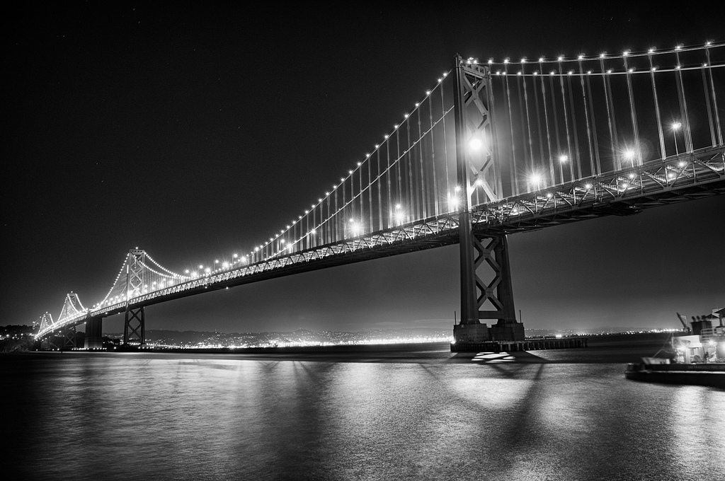 Black Lab Fall Wallpaper San Francisco In Black And White