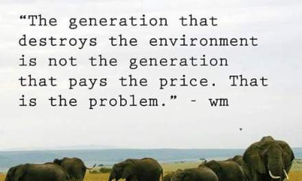 The generation that destroys the environment