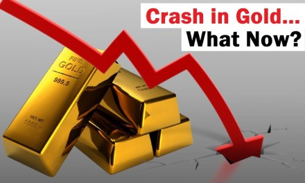 Crash in Gold… What Happens Now?