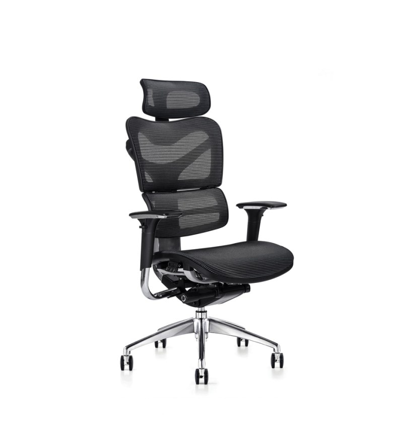 v46 ergonomic chair with mesh seat and executive headrest
