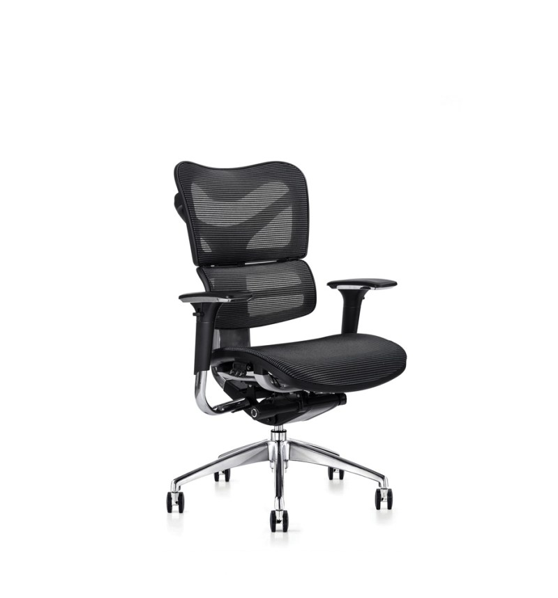 v46 ergonomic chair with mesh seat