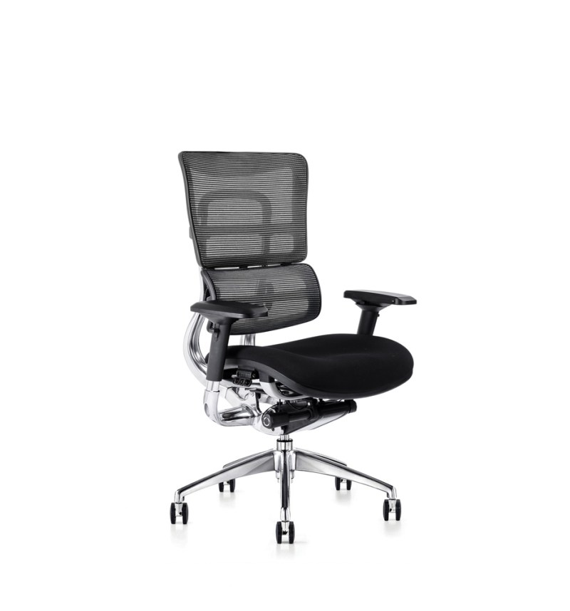 i29 ergonomic chair with fabric seat