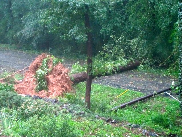 Hurricane Irene: The View from Richmond, VA (2/6)