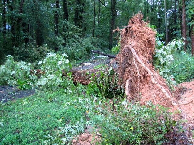 Hurricane Irene: The View from Richmond, VA (5/6)