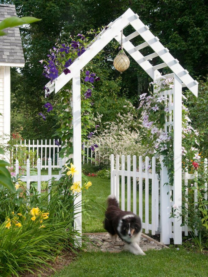 Backyard Landscaping Ideas - Fence in Fido - harpmagazine.com