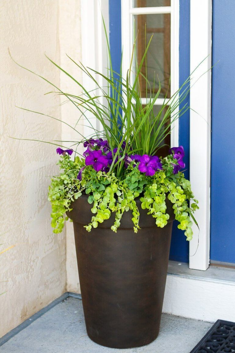 Front Door Flower Pots Ideas - Tall Antique Bronze Flower Planter - harpmagazine.com