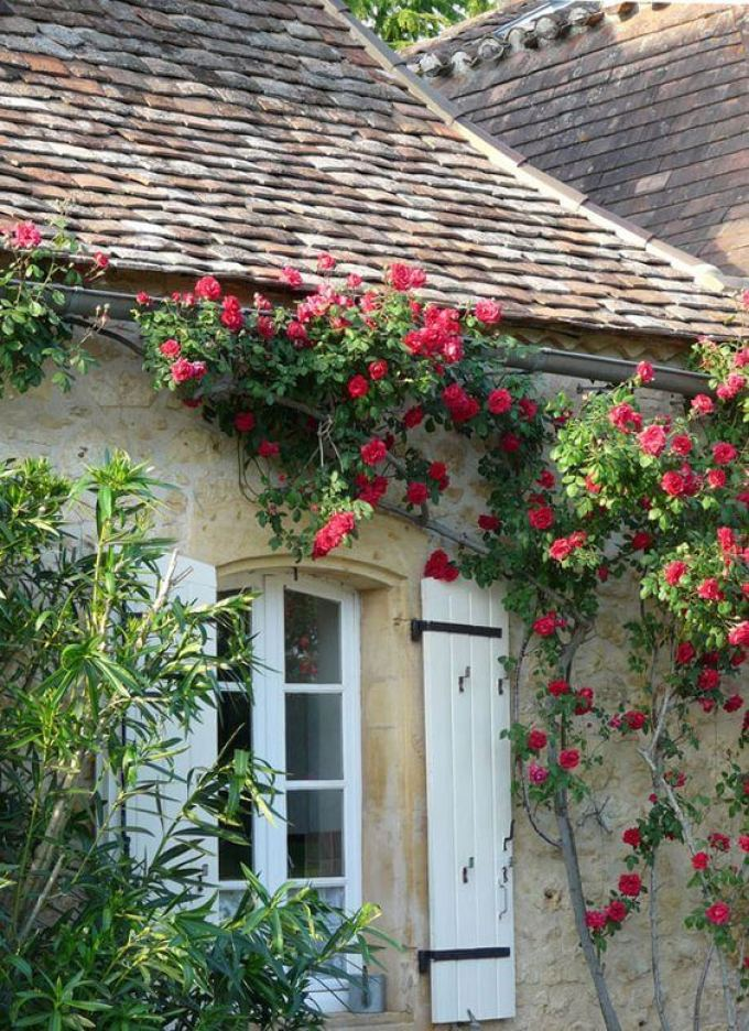 French Country Decor Let The Roses Climb Up The Wall - Harppost.com