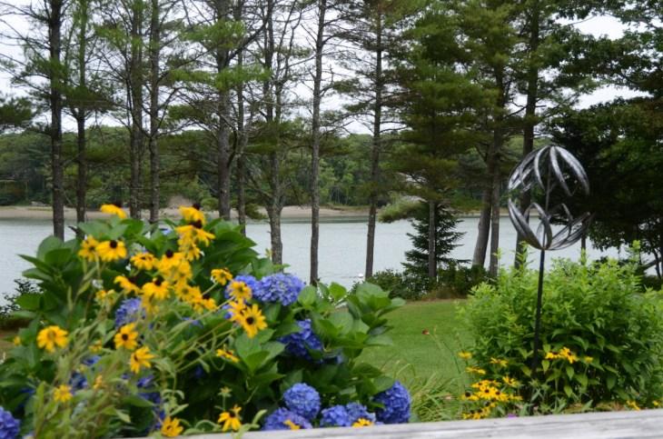 Liz's Garden View