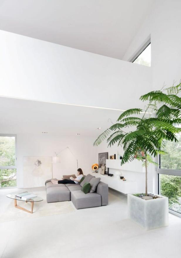 All White Modern Living Room Ideas with Tropical Accent
