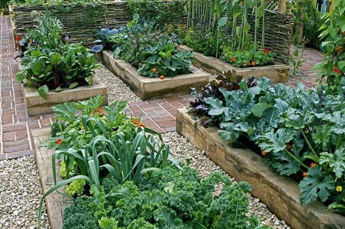 Gardening Ideas For Small Yards Choose Plant Varieties - Harptimes.com