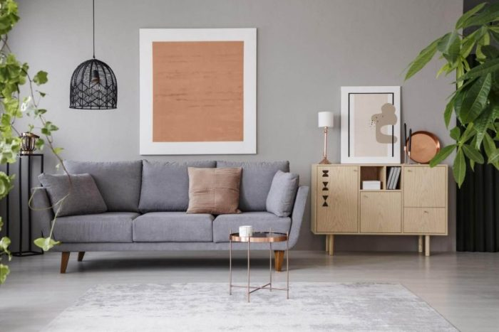 Grey Living Room Ideas with Minimalist Touch