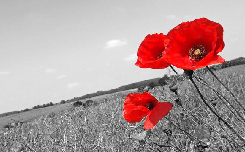 Poem Analysis: 'Futility', Wilfred Owen