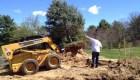 10-transplanting spruce tree (10)
