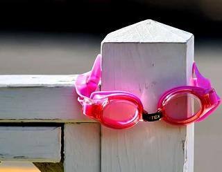 Goggles on fencepost (Harrisonfarm.com)