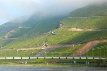 Whelener Sonnenuhr Vineyard, Mosel