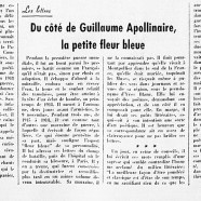 «Du côté de Guillaume Apollinaire, la petite fleur bleue»