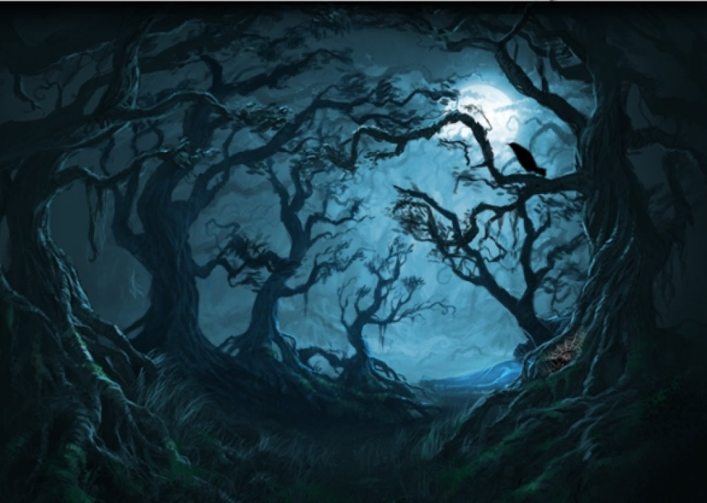 Evening In The Forbidden Forest Audio Atmosphere