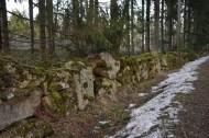 Stenmuren vid Hästhagen.