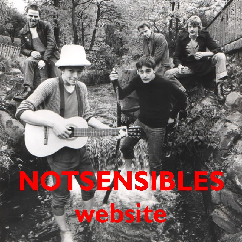 Notsensibles website