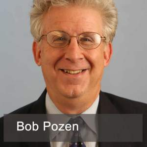 Bob Pozen, Too Big to Save
