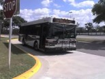 #2302 at the West Tampa Transfer Center. Shawn used this bus when he was in training. Photo Credit: Shawn B.