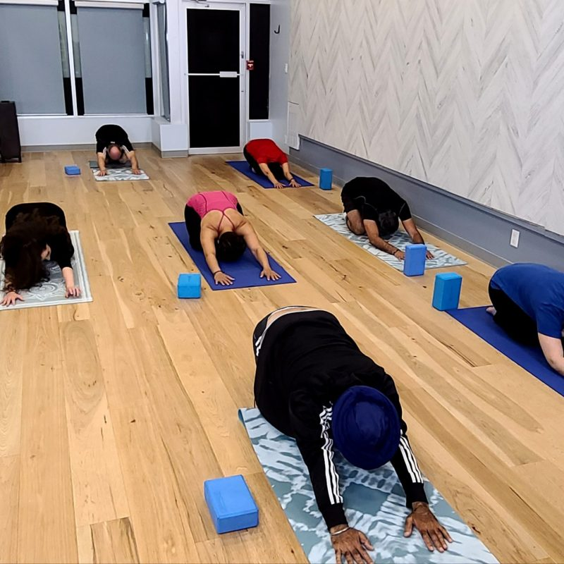 yogarehab-group